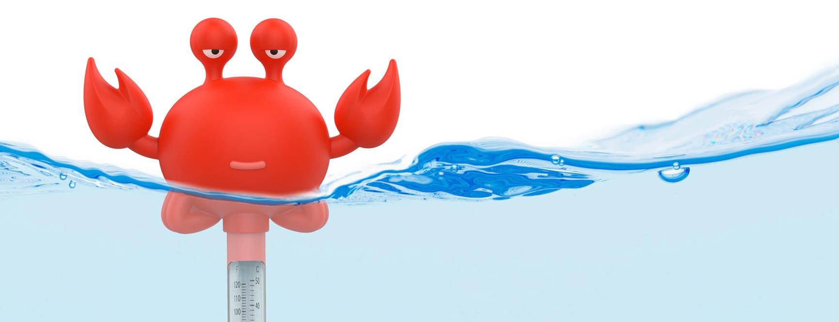 Pool Thermometer Portfolio Header 1